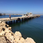 AMCM Common User Facility North Jetty Deck Repair and Pile Wrapping Specification