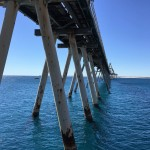 Dampier Salt  Jetty Cathodic Protection Annual Performance Review